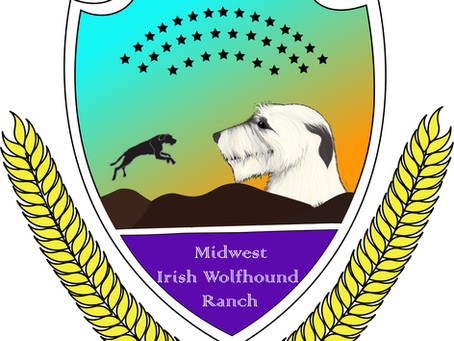 Fan Clubs of Irish Wolfhound Breeders Fact & Fiction