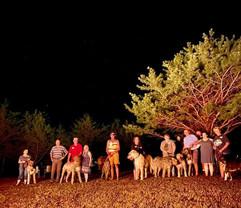 National Irish Wolfhound Association Bon