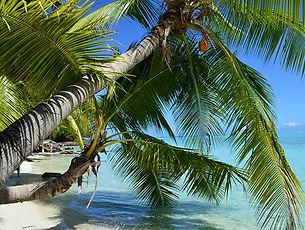 Frans Polynesië 1