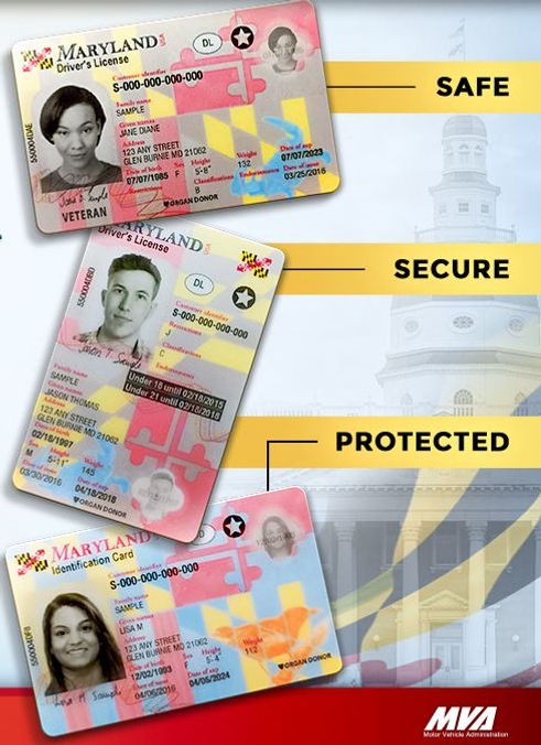 maryland drivers license requirements for adults