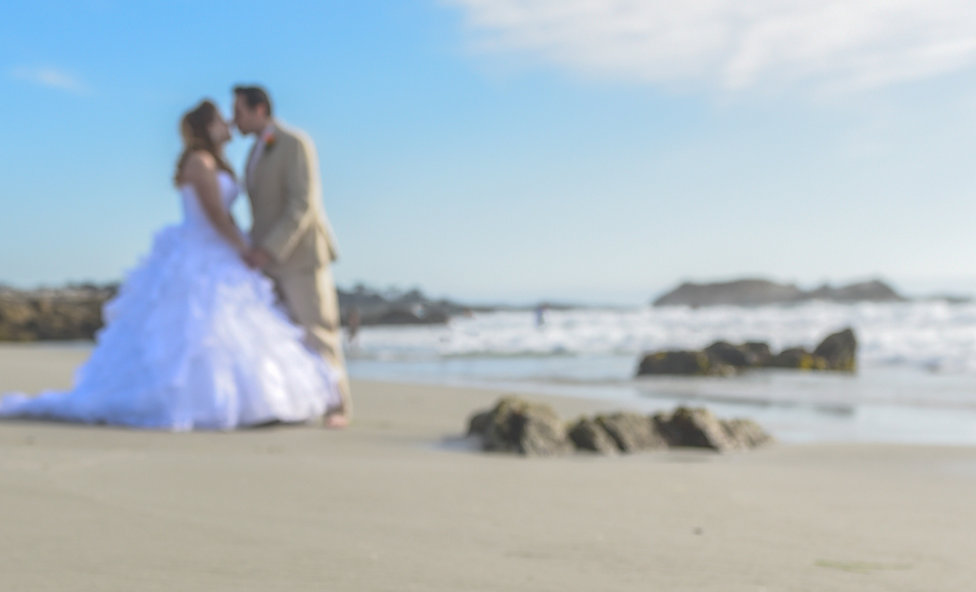 Carmel Weddings is here to assist you with your dream wedding!