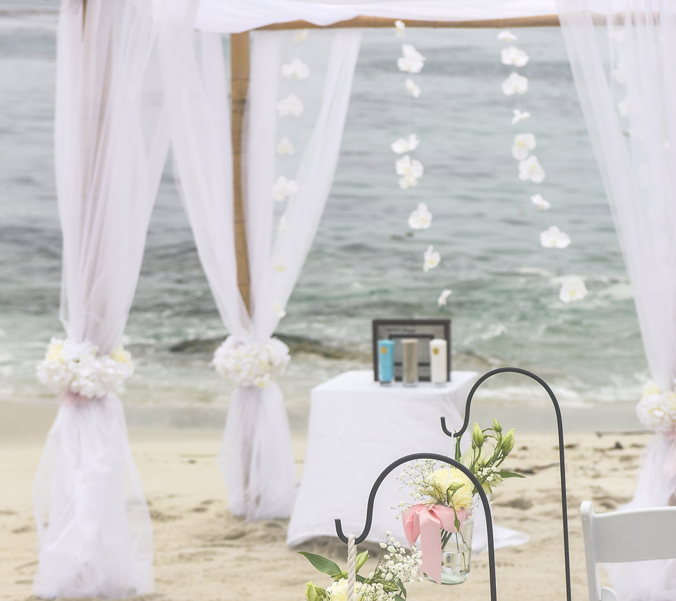Carmel Weddigs will make your dream wedding come true!