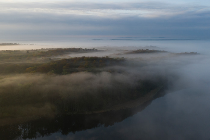 Werbellinsee im Nebel