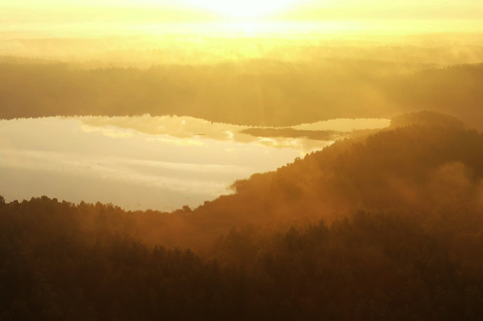 Waldsee in der Schorfheide