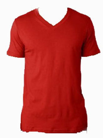 Short Sleeve V-Neck (More Colors)