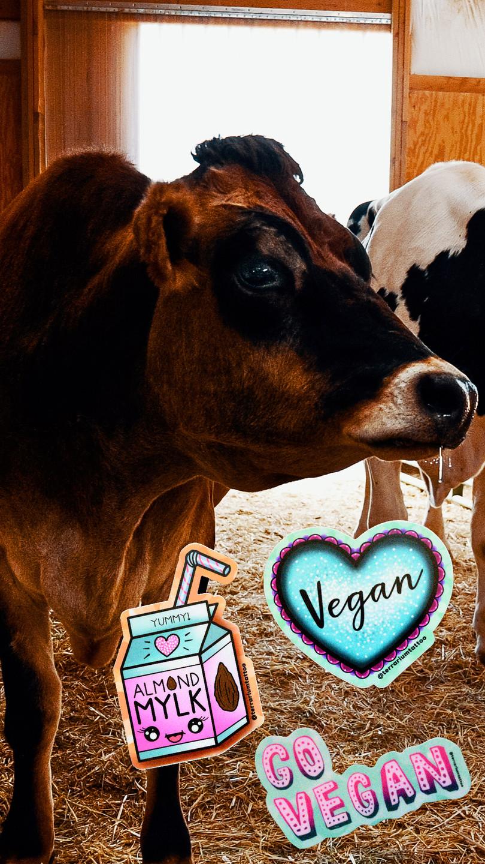 Vegan Glitter KAWAII Sticker Pack - NO Dairy Almond Milk