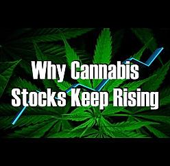 Cannabis stocks 1.001.jpeg
