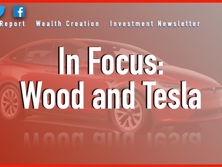 In Focus: Wood and Tesla 3K