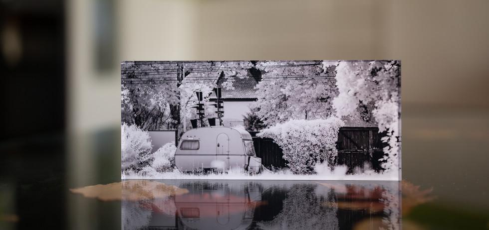 SALE OUT - GARDEN II - Echter Fotoabzug   hinter 4mm Acrylglas   auf 2mm AluDibond   inkl. Aufhängung von Alexander Kästel
