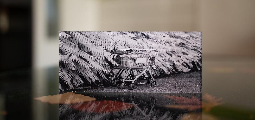 SALE OUT - KONSUM  - Echter Fotoabzug   hinter 4mm Acrylglas   auf 2mm AluDibond   inkl. Aufhängung von Alexander Kästel