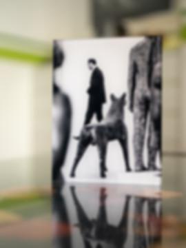 THE GUARDIANS  - Echter Fotoabzug   hinter 4mm Acrylglas   auf 2mm AluDibond   inkl. Aufhängung von Alexander Kästel