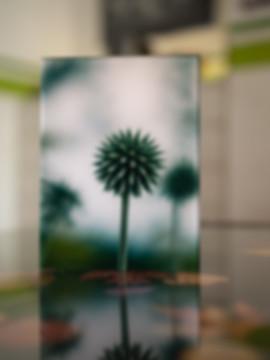 WORLDS - Echter Fotoabzug   hinter 4mm Acrylglas   auf 2mm AluDibond   inkl. Aufhängung von Alexander Kästel