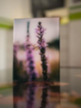 TWO TOWERS - Echter Fotoabzug   hinter 4mm Acrylglas   auf 2mm AluDibond   inkl. Aufhängung von Alexander Kästel