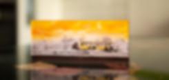 BUS -INFRAROT - Echter Fotoabzug   hinter 4mm Acrylglas   auf 2mm AluDibond   inkl. Aufhängung von Alexander Kästel