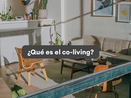 Descubre el mundo del co-living! 🚪🛋