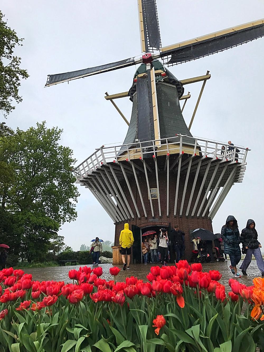 Keukenhof, Amsterdam