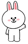 CONY790x500_edited_edited.png