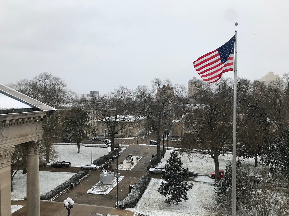 Snow Day At The Capitol