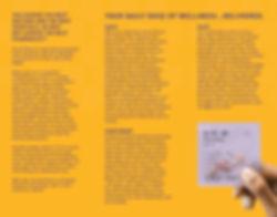 Script Direct Tri-fold Brochure 2_inside