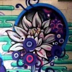 WakudaStudios_Blooming_Minneapolis_Butto
