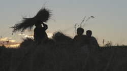 Women cut the grass for the hut