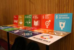 The 17 Global Goals.