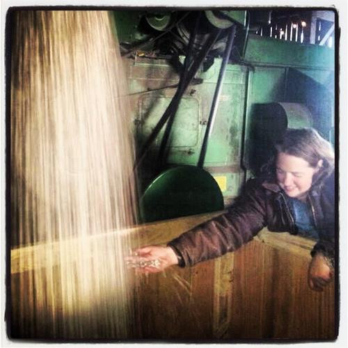 What is Regenerative Agriculture?       And Why This Fourth Generation Farm Girl Loves It.