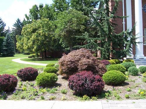 PhotoGallery1_Plants1_jpg.jpg