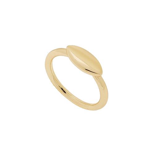 Spey Ring