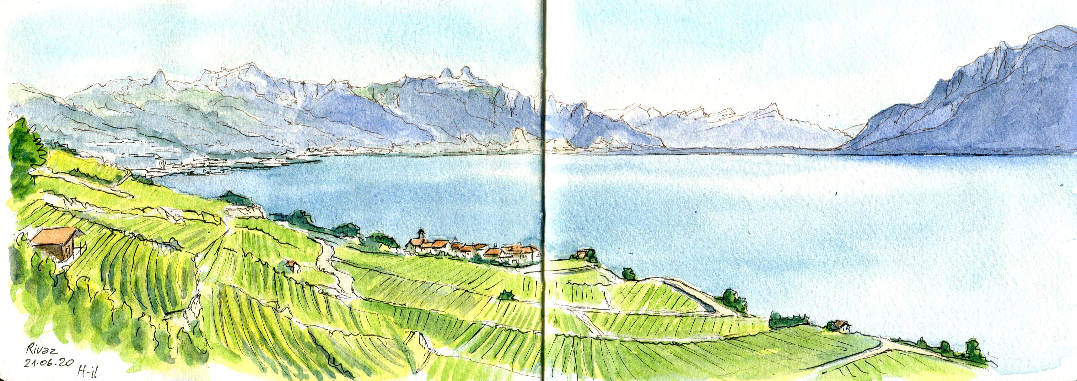 Rivaz et Haut-Lac033