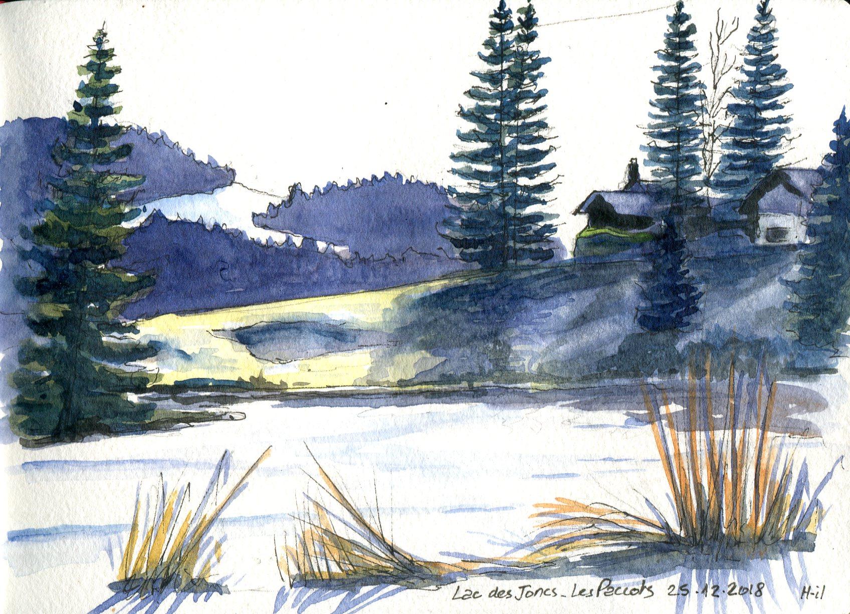 Lac_des_Joncs_gelé