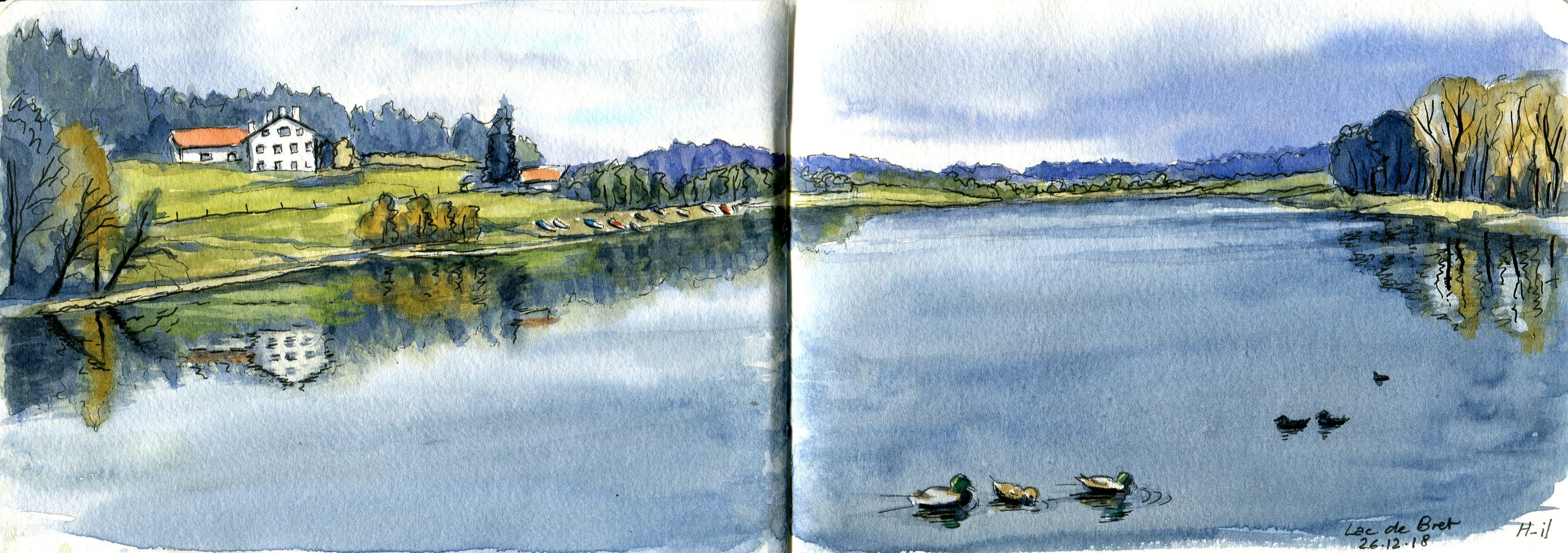 Lac de Bret et canards019