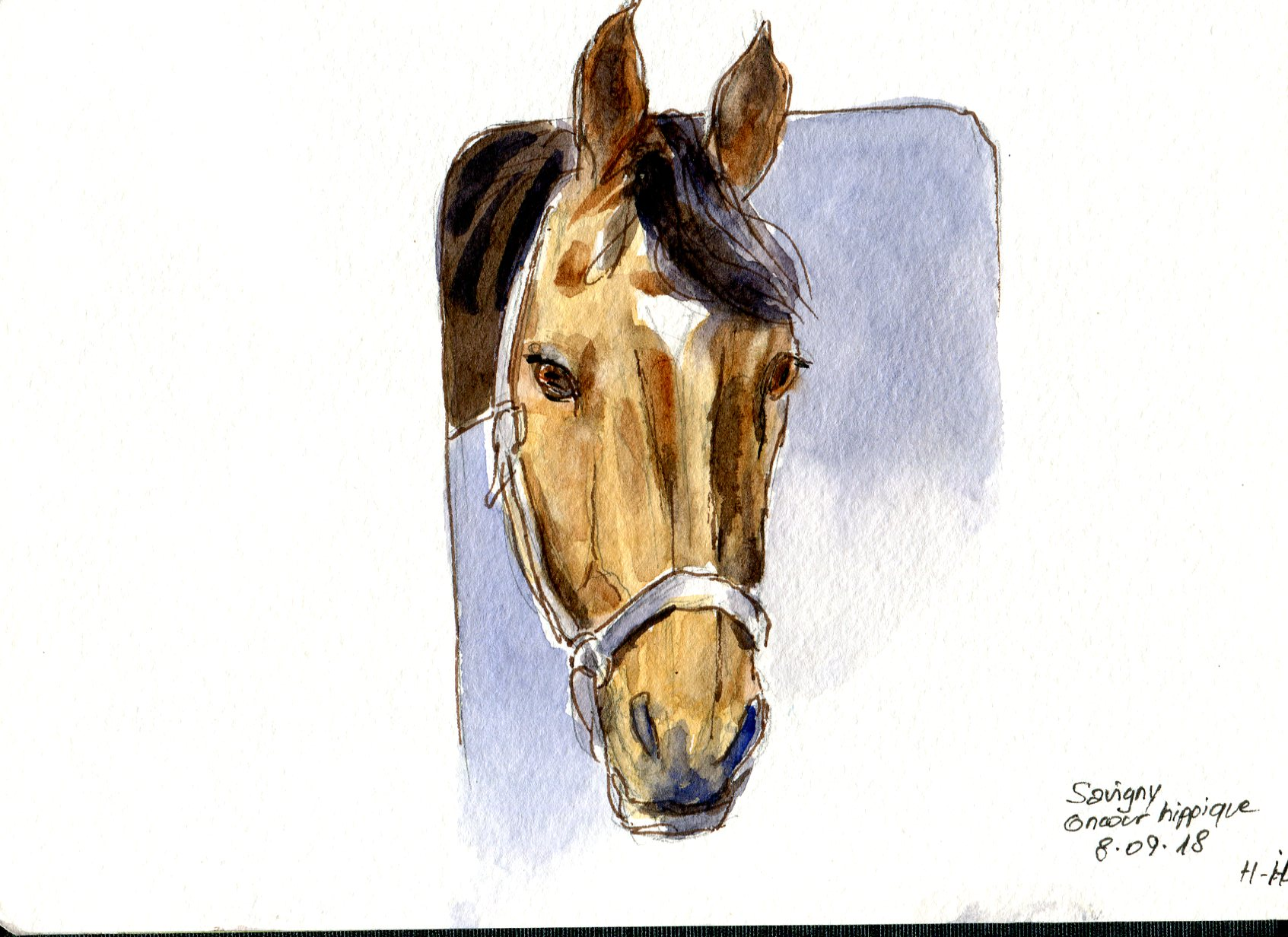 cheval043