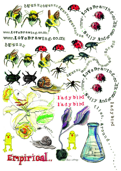 insects for 3D transfer