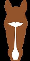 SALISHLOGO bronze.tif