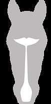 SALISHLOGO silver.tif