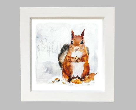 Framed Squirrel in snow