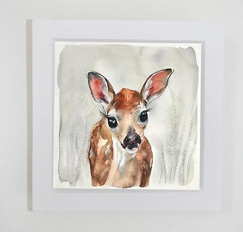 Small framed baby deer