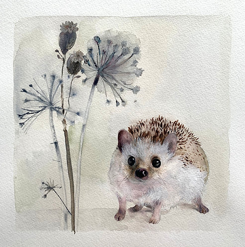 "Original painting of ""Henry"" the baby hedgehog"
