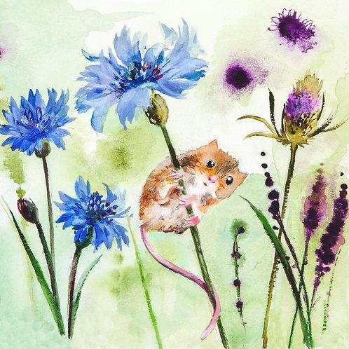 Field mouse in a field of cornflowers