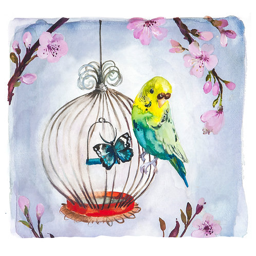 Original budgie on cage watercolour painting.