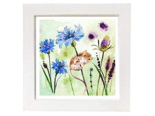 Small framed field mouse
