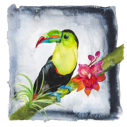 Original Toucan watercolour painting.