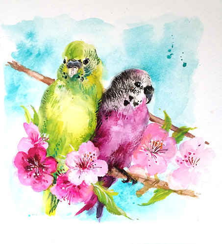Original pair of pink and green budgies.
