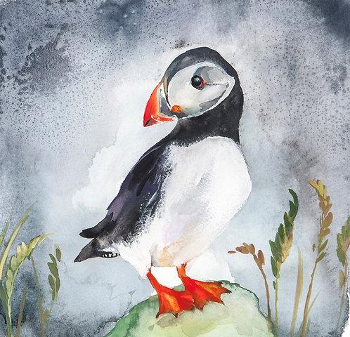 Original Puffin watercolour painting.