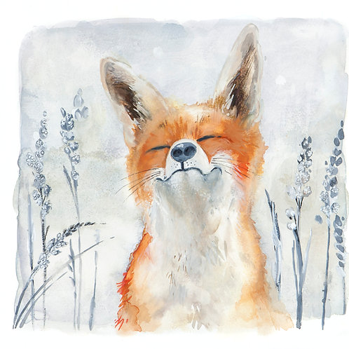 Contented Mr Fox