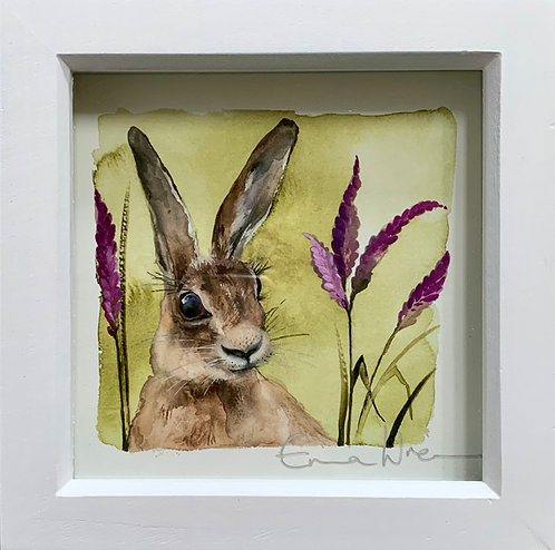 Small framed heather hare