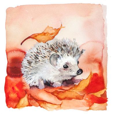 Original Hedgehog watercolour painting.