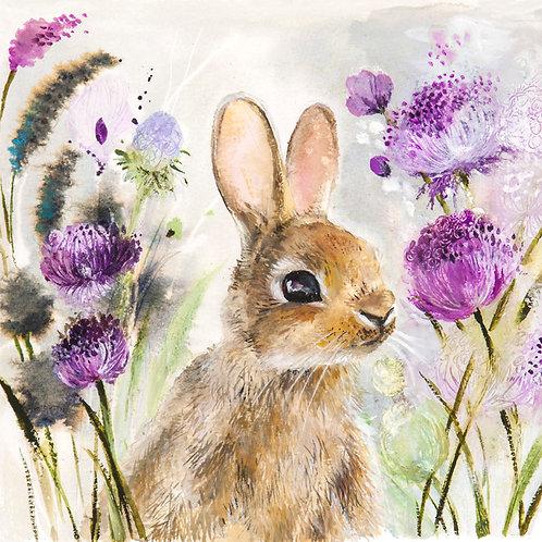 Rabbit hiding in the meadow