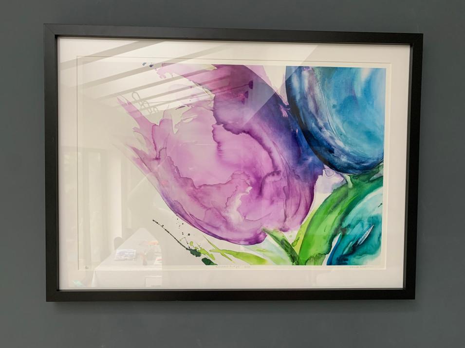 Rainbow tulip Giclee framed print